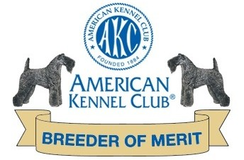 American Kennel Club - Breeder of Merit